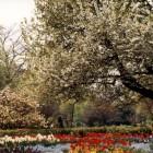 Der Botanische Garten in Wuppertal