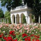 Bürgerpark Pankow