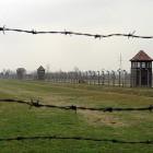 Stacheldraht in Auschwitz-Birkenau
