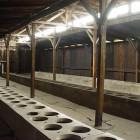 Toiletten in Auschwitz-Birkenau